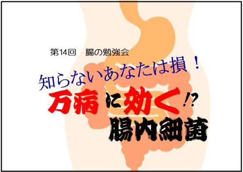 腸.FJL312.jpg1